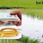 AP Loan Waiver List - Eligible Farmers for Crop Loan and Gold Loan - Runa Maafee Scheme