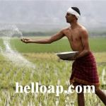 AP Farmers in Hyderabad to Get Crop and Gold Loan Waiver Scheme Benefits
