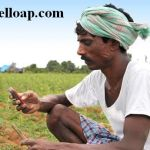 AP Crop and Gold Loan Call Center Numbers and Helpline 1100, 1800 425 4440 and  1800 103 2066