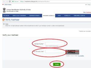 Aadhaar Status Online
